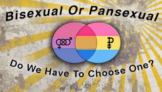 Bisexual or Pansexual - Choose One
