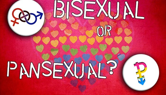 Bisexual or Pansexual, by Greta Christina